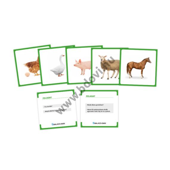 EARL feladatkártya háziállatok