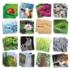 Kép 2/3 - Taktilis maxi memóriajáték - környezetünk