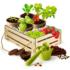 Kép 2/2 - Science & Play: Tudományos kertész játékszett
